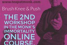 Tai Chi Workshop 2: Brush Knee