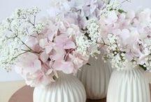 Flowers / We love flowers!