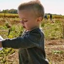 Homesteading: Children / How homesteaders can get their kids involved on the homestead. Tips to include your children in DIY projects, animal care, gardening, and more.