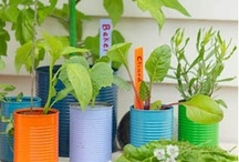 Get gardening / Garden ideas for the whole family.