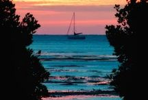 Florida....Welcome to the sunshine state / Sharing my favorites sights in Florida.  Welcome to my home.... / by Kimbra Gilbert