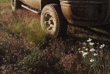 cars / by Laurel Jackson