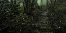 Origin of the Fae: Forests