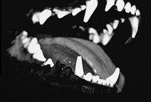 aes   beast inside / » am i a monster?   werewolf