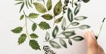 Botanical Illustration Inspiration