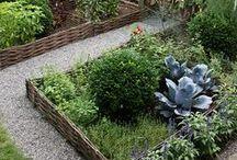 Gardens / by Jessica Hammer