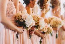 Dream Wedding Items / by Molly Beckett