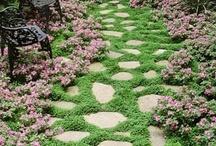 Dream Gardens  / by Lena Rhodes