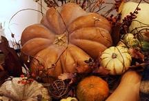 Fall Decorating Ideas / by Cindy Clark