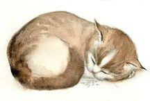 Feline Fine...art