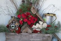 Christmas / decor, baking, wrapping! / by Carla Carr