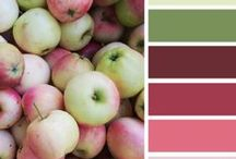 Color Palettes / by Ingrid Hasselbaum