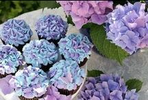 Shades of purple / lilacs, violets and purples..