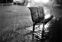 RAIN / Rain Photograpy / by Lacie Whitney