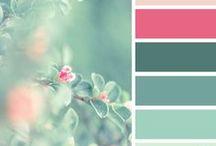 Colour Concepts / by FairyMary✿