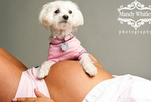 Barefoot and Pregnant  / by Jacque Wedel