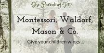 Montessori, Waldorf, Mason & Co. / Your children need wings to fly and normal schoolsystem often tends to cut those. This board can help you reclaim them through alternative education ideas from great thinkers like Montessori, Waldorf, Pickler, Mason & Co. You will find information on home-schooling and creative educational activities.