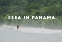 OUR VIDEOS / Seeababes in motion. Watch our latest videos for surfing and style inspiration.