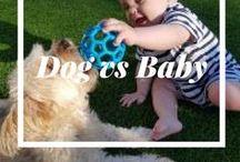 Fun Activities for Kids / Kids fun indoor and outdoor activities