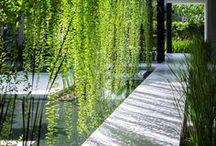 GREEN / Et si on mettait plus de nature dans nos vies ?