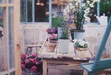 Garden stuff / Design features / by Alexandra Hayler