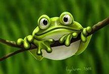 animali frog rane