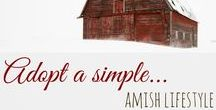 Amish Lifestyle / An inspiring board about the Amish who live a God-centered life through faith, family, and community. Inspire to live like the Amish.