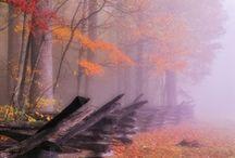 Fall/Winter Inspiration 2013