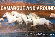 Provence and around / The beautiful Provence area : wild horses, salines, bulls, gypsies...
