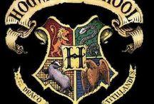 Wizards & Wonder