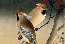 Japanese, chinese prints