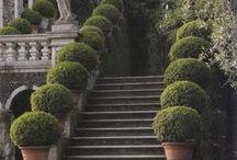 Architecture in the Garden / Structure in the garden