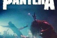 Pantera: It's Domination