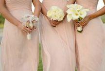Wedding / by Alex Fennesy