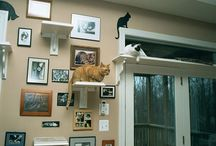crafty cats wall