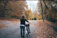 { by bike }