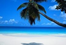 Sunshine, Sand and Water
