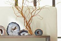 Decorating with Natural Elements / It's not all about flowers and shell collections.  Now you can decorate your home with other natural elements and give your home and garden the organic and trendy look that you desire.