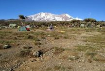 39. KILIMANJARO CLIMB - LEMOSHO ROUTE (TYR) / Walk the less-trekked Lemosho Route. See the curvature of the earth and soak up the varied scenery.