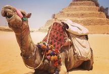 15. EGYPTOLOGY (AEE) / See more archaeological sites with a highly knowledgeable Egyptologist.
