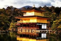 14. ANCIENT & MODERN JAPAN (AOP) / Experience cherry blossom season or beautiful autumn colours. Watch the famous snow monkeys bathing in hot springs. Take the incredible high speed 'bullet train'.