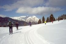 5. CROSS-COUNTRY SKIING: DOBBIACO (CXD) / Ski surrounded by the Dolomites' jagged peaks and explore an extensive network of loipe. Find the right level on multigrade weeks.