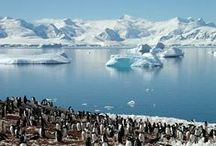 1. ANTARCTIC EXPLORER (PSX) / Explore the remarkable South Shetland Islands.  Visit the Antarctic Peninsula, the most pristine wilderness on earth.  View incredible wildlife including penguins, seals and whales.