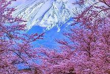 Japon ^^