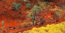 Ausztrália,,New Zealand