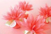 Colour love ... watermelon / Watermelon colour inspiration