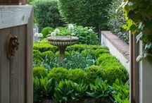 Garden Inspiration / Gardening that is beautiful, clever,  a joy to behold.