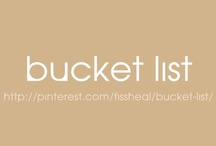Bucket List / by fissheal manuel