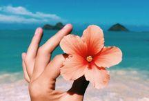 Céu e Mar '