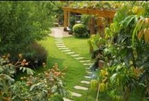 Beyond the Back Door / Lovely ideas for a special backyard.
